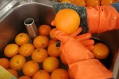 Lavaggio a mano delle Arance Biologiche